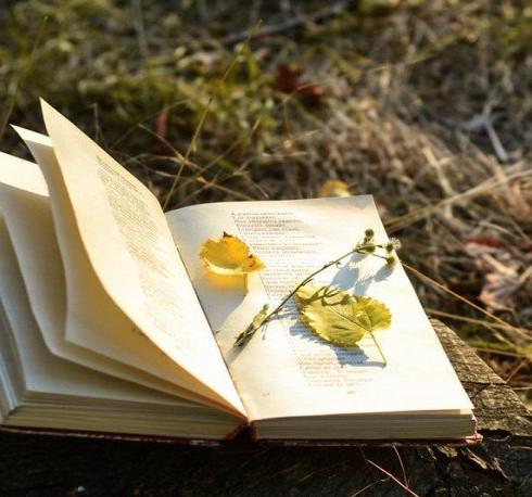 La aventura de publicar tu libro autogestionado