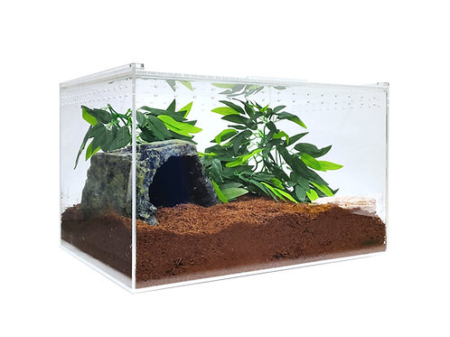 Acrylic Enclosure - XLarge Clear Top