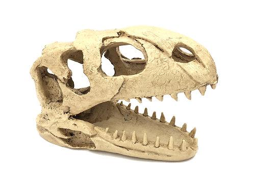 Dinosaur Skull Reptile Ornament/Hideout