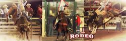 Bar T Rodeo