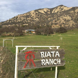 Riata Ranch International