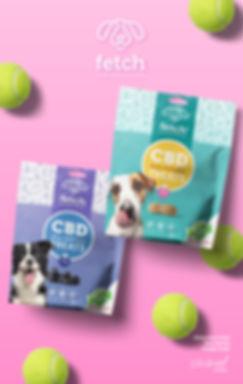 fetch-dog-treats