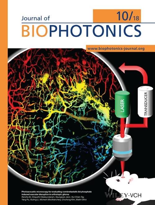 En la imagen, proporcionada, el 19 de noviembre de 2018, por la Universidad de Ciencia y Tecnología de Pohang, se muestra la cubierta de la revista científica estadounidense Journal of Biophotonics.