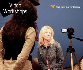 Video Workshops with logo.png
