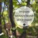 Positiever en Gelukkiger leven: Is jouw glas halfleeg of halfvol?