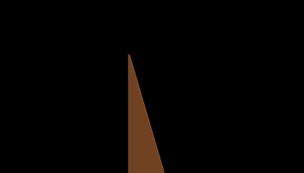 MONDFONT-N.WSHP.1 copy.png