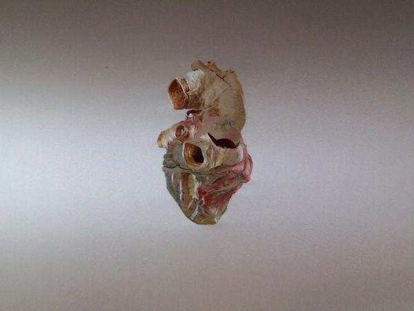 2.heart.JPG
