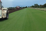 Our fields of turf are lovingly cared for, producing the best turf in the country