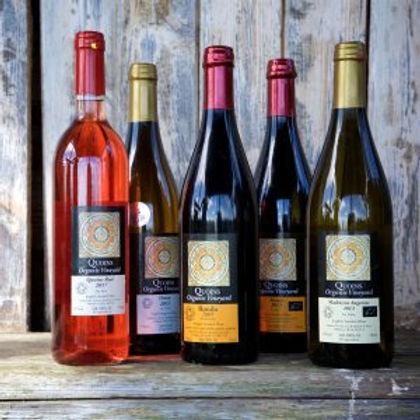 Bottles of wine from Quoins Vineyard