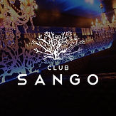 club_logos_sango.jpg