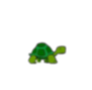 Turtle-01.png