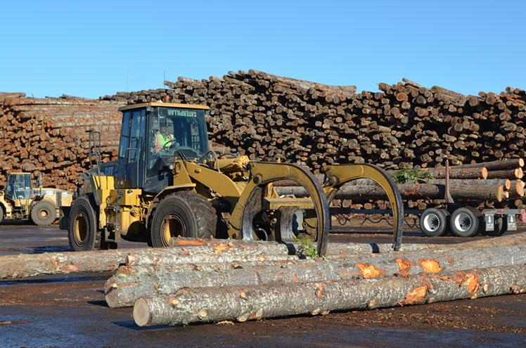 Schmidbauer Lumber