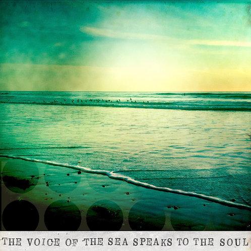 The Sea Speaks