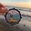 Thumbnail: Pinniped Sticker - 100% donation