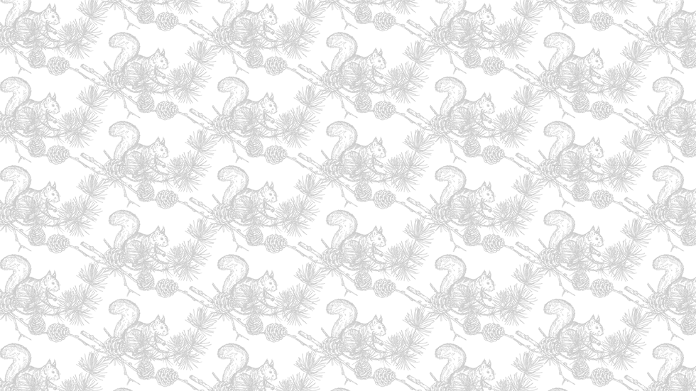 vectorstock_21680028-[Converted].png