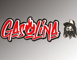 Logo GSLNA_edited.jpg