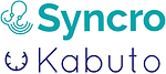 syncro partner.png