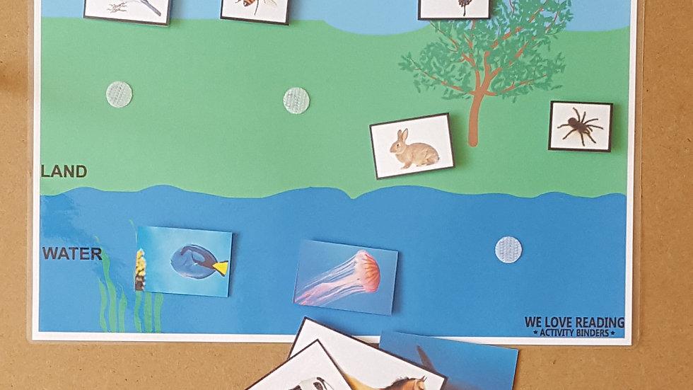Animal Habitat Activity Page