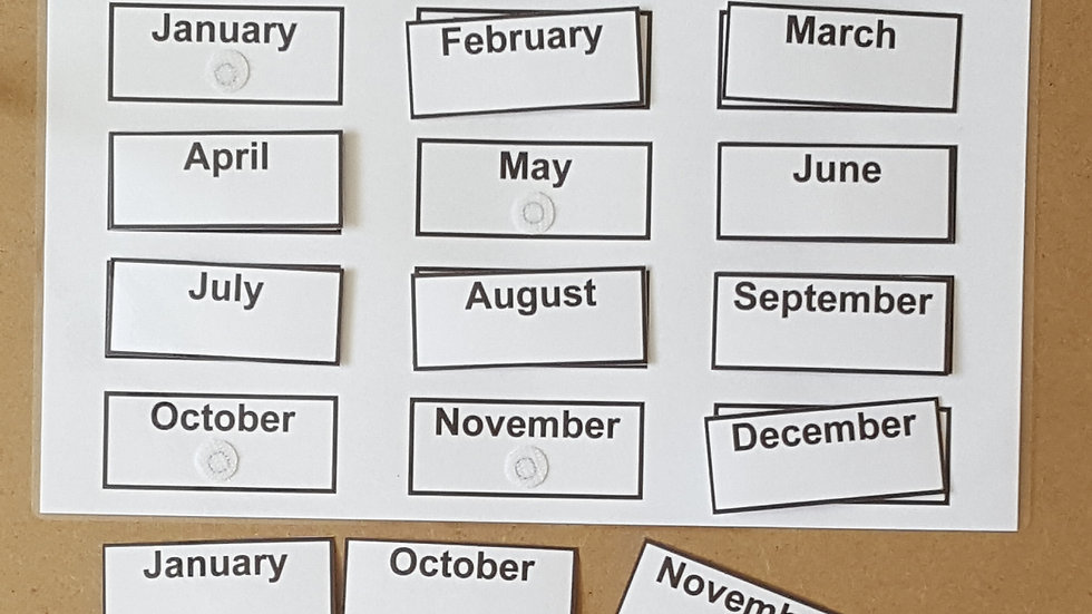 Months of the Year Activity Page