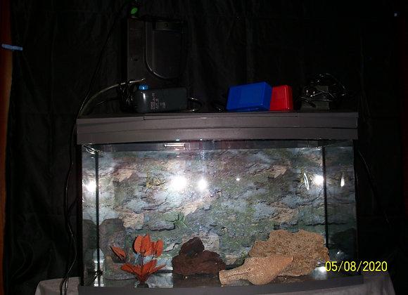 Lot Aquarium, système et pompes, décorations