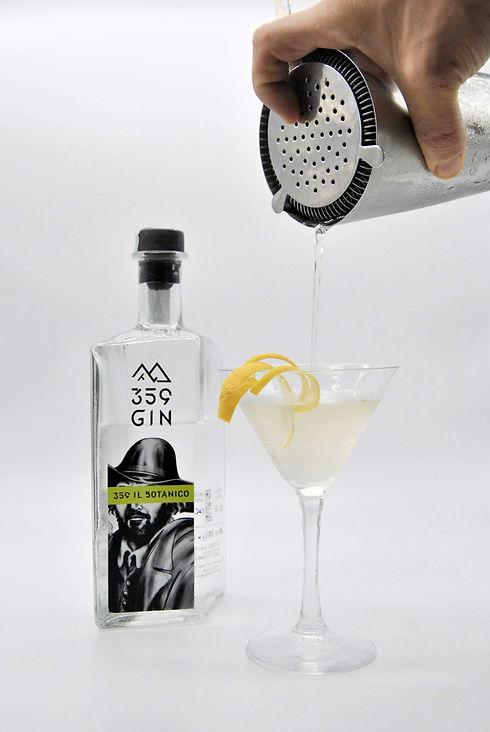 359gin_cocktail_ilbotanico-.jpg