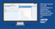 OnScreen_Ecran_SAP-1.png