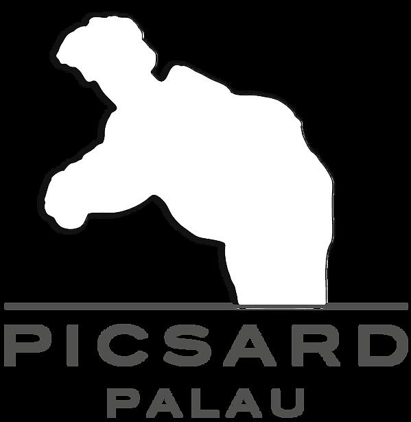 Logo Picsard per Carta Intestata 2016.pn