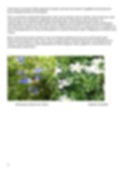 Randonnée_botanique_à_L'Aire_de_Côte_(Ai