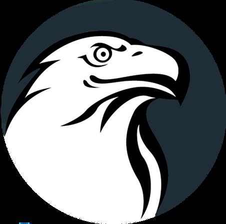 Eagle Only Logo_edited_edited_edited_edi