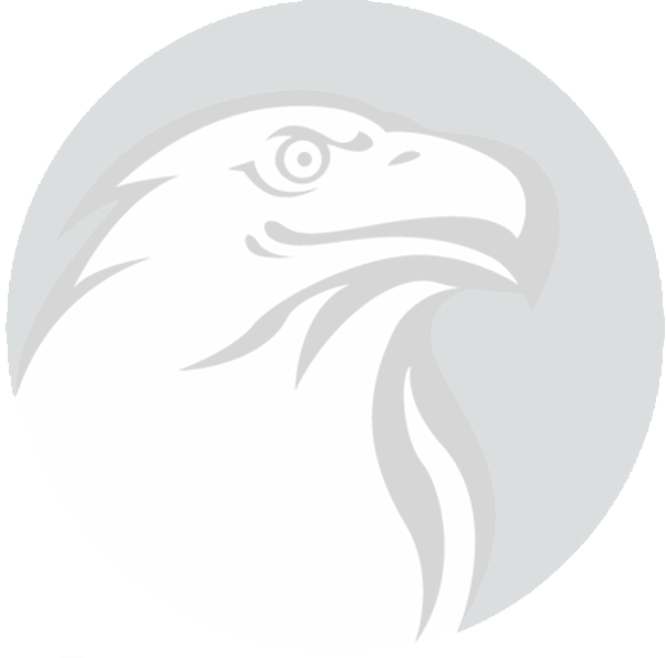 Eagle Only Logo_edited.png