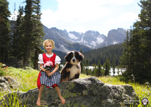 Cute little Swiss girl with Bernese mountain dog