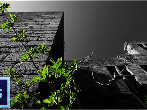 Sin City Fotoeffekt