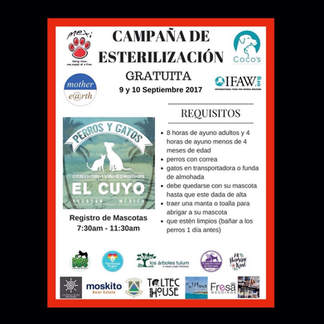 El Cuyo Sterilization  Clinic.