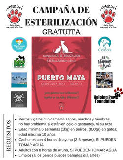 Puerto Maya sterilization clinic