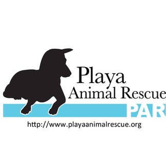 Playa Animal Rescue Support
