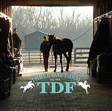 Three Day Farm Logo.jpg