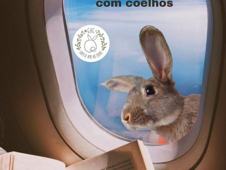 Viagens internacionais com coelhos