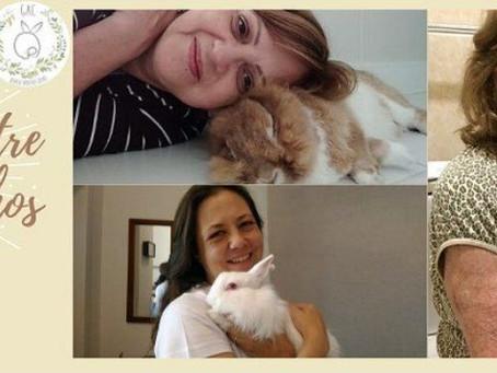 Dicas de adaptação entre o coelho e tutor!