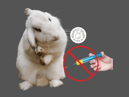 Devo vacinar meu coelho?