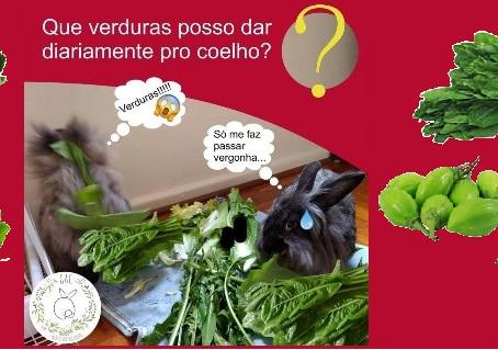 Quais verduras posso dar para o coelho?