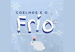 Como proteger seu coelho no frio?