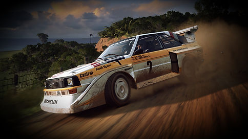 dirt-rally-2-quattro_edited.jpg