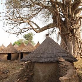 Taneka village