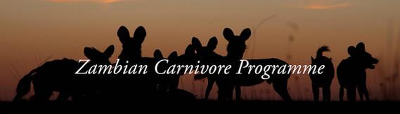 Zambia Carnivore Programme