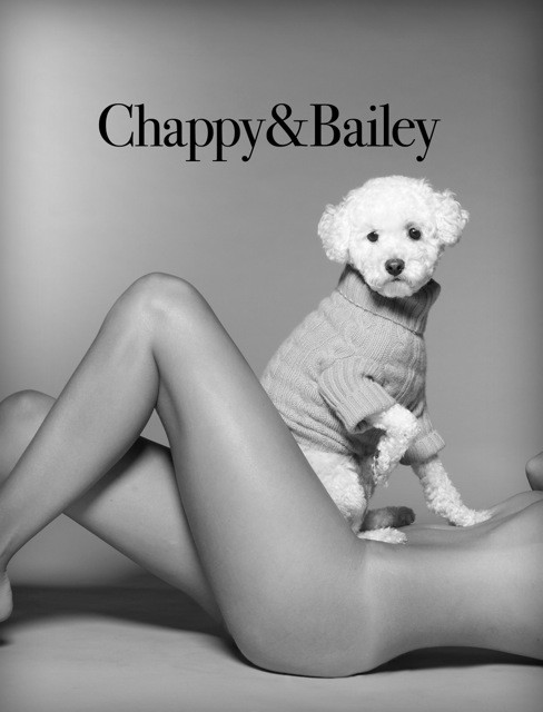 Chappy & Bailey Clothes for Dogs