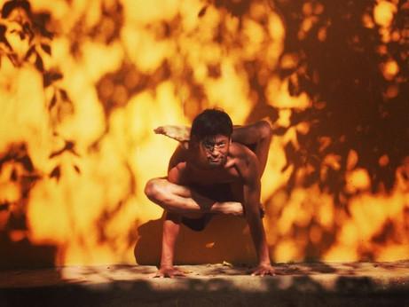 【ヴェレダ オンラインセッション】話題の「アシュタンガヨガ」入門編&オイルケアレクチャー 12/9(水)19時から開催