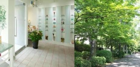 Sunmoon Flower Essence Cafeが、4月にお送りする新テーマを発表