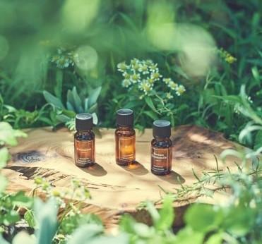 11月3日はアロマの日!人気アロマブランドが集結する「アロマフェア2018」開催 テーマは~植物の香りの力で、Healty&Beauty Life~