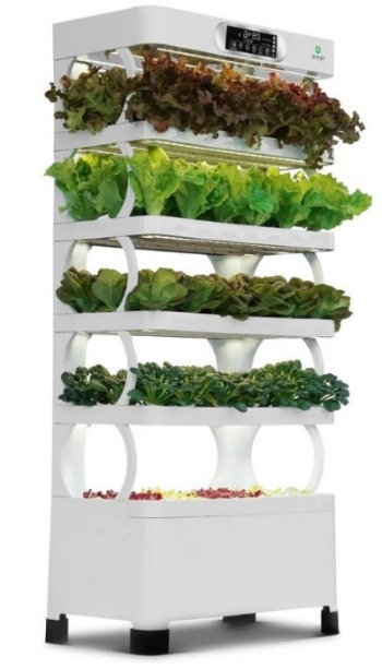 Hydroponic Multi-level GROW System