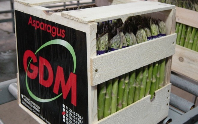 Asparagus in a crate